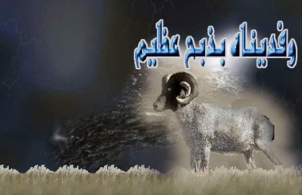 Photo of وزارة الأوقاف والشؤون الإسلامية: أول أيام عيد الأضحى يوم الجمعة (عاشر ذي الحجة) 26 أكتوبر الجاري
