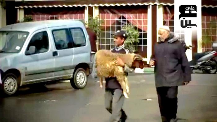 Photo of بالفيديو: عَيْنٌ على العيد الكبير