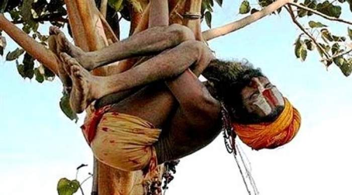 Photo of هندي يعيش على شجرة في انتظار اعتذار زوجته
