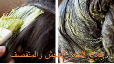 Photo of خلطة ممتازة جدا ومجربة لعلاج الشعر الجاف الهايش والمتقصف حيث تزيد من طوله ونعومته