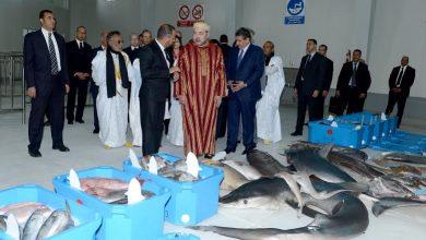 Photo of الملك محمد السادس يدشن السوق الجديد للسمك بالداخلة