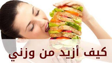 Photo of وصفة لفتح الشهية وتزيد في وزنك وتسمنك