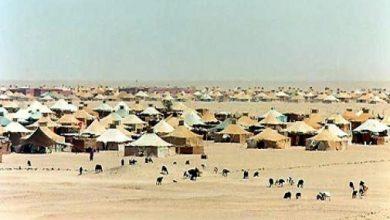 """Photo of أغورافوكس: """"تاريخ الشعب الصحراوي"""" خرافة تحاول الجزائر تسويقها"""