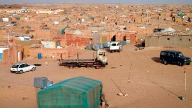 Photo of محلل سياسي: استمرار الجزائر في احتضان مخيمات اللاجئين يشكل خطرا على أمن المنطقة