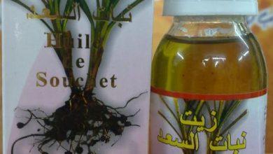 Photo of الطريقة الصحيحة لصنع زيت السعد لتخفيف شعر الوجه