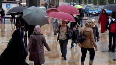 Photo of مقاييس التساقطات المطرية خلال الـ24 ساعة الماضية