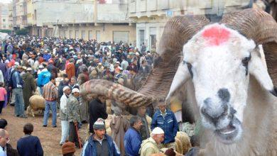 Photo of باحث في علم الفلك : هذا هو أول أيام عيد الأضحى المبارك بالمغرب