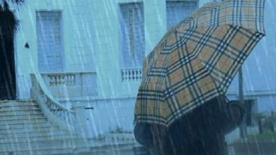 Photo of مقاييس الأمطار المسجلة بالمملكة خلال ال24 ساعة الأخيرة