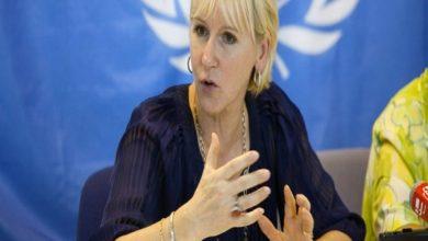 """Photo of وزيرة الشؤون الخارجية السويدية تصف مباحثاتها مع مزوار ب """"المثمرة'"""