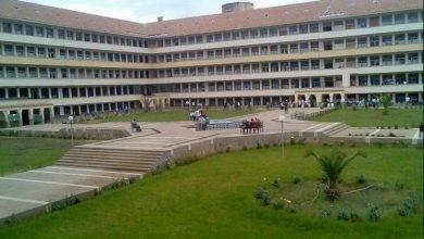Photo of جامعة سيدي محمد بن عبد الله تحسن موقعها على المستوى الدولي