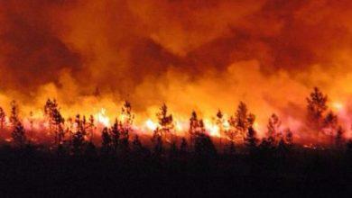 Photo of إخماد حريق تسبب في إتلاف ثلث هكتار بغابة كبدانة بإقليم الناظور