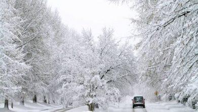 Photo of السلطات العمومية تواصل تدخلاتها لتقديم الدعم والمساعدة للمواطنين لمواجهة موجة البرد