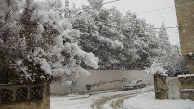 Photo of الجزائر .. سبعة قتلى بسبب سوء الأحوال الجوية