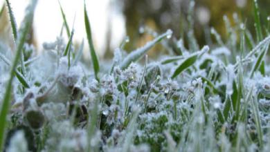 Photo of برد قارس يوم الأحد ودرجات الحرارة تصل ل 11 تحت الصفر ببعض المناطق