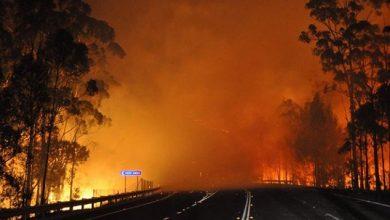 Photo of أستراليا تكافح 50 حريقا وسط مخاوف من انقطاع الكهرباء