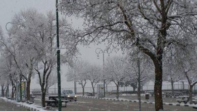 Photo of توقعات طقس الجمعة 24 فبراير .. ثلوج وأمطار وزخات رعدية