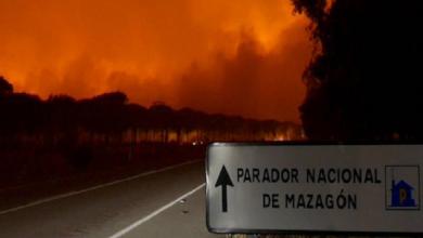 Photo of إجلاء أزيد من 2000 شخص بسبب حريق غابوي في جنوب إسبانيا