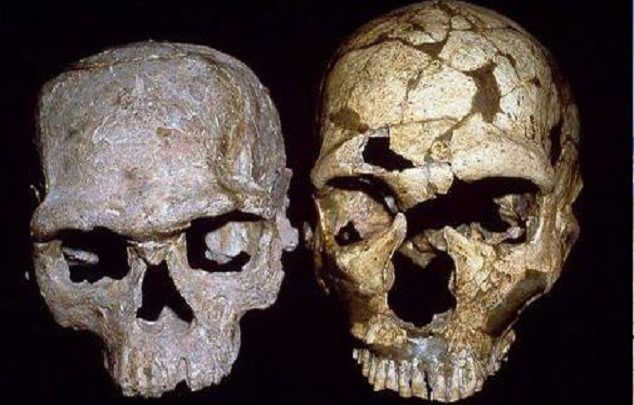 اكتشاف أقدم إنسان يعطي للمغرب مكانة متميزة في دراسة هذه الحقبة من تاريخ البشرية