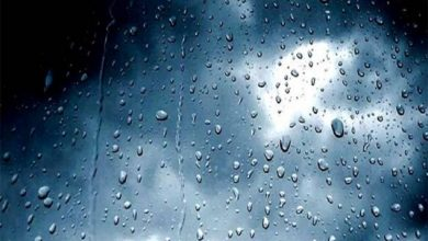 Photo of توقعات أحوال الطقس.. حرارة طيلة يوم غد