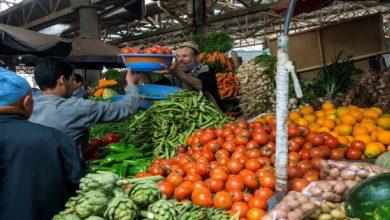 Photo of فيديو: نصف المنتجات الغذائية في المغرب يكون مصيرها القمامة