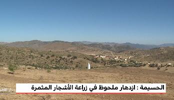 Photo of الحسيمة /فيديو/: أخنوش يعلن عن زراعة 10 آلاف هكتار إضافية من الأشجار المثمرة