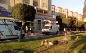 طنجة: محاولة فاشلة من مخمور للسطو على وكالة بنكية