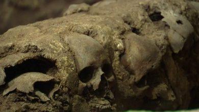 Photo of فيديو: اكتشاف برج جماجم بشرية يعود لحضارة الأزتيك