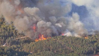 Photo of الحسيمة.. حريق يأتي على أزيد من أربعة هكتارات من غابة بوسكور