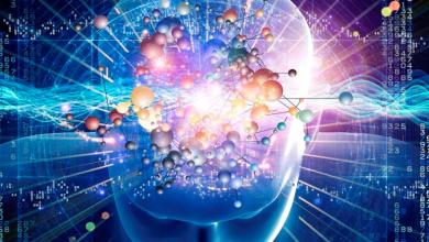 Photo of علماء.. الدماغ قادر على حفظ معلومات جديدة أثناء النوم