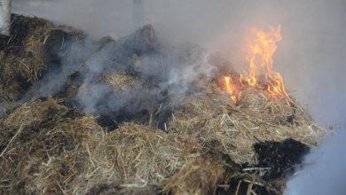 Photo of حد السوالم.. جلسة خمرية تنتهي بإضرام النار في 960 حزمة من التبن