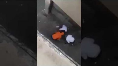 Photo of فيديو.. ثلاثة لصوص بالمعاضيد كايتقاسمو داكشي اللي شفرو في الصباح بكري