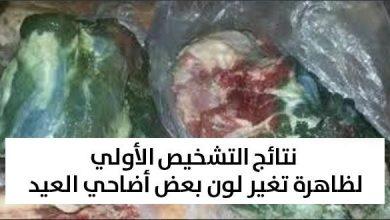 Photo of وزير الفلاحة يقدم نتائج التشخيص الأولي لظاهرة تغير لون لحوم الأضاحي
