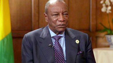 Photo of فيديو: غينيا تستدعي سفيرها في الجزائر