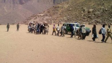 Photo of منظمات حقوقية دولية: الجزائر قامت برمي مهاجرين أفارقة في الصحراء
