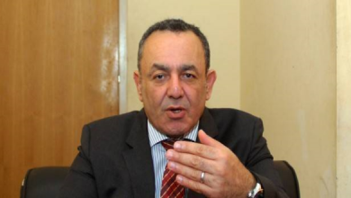 Photo of كاتب مصري: المغرب نموذج سياسي وحضاري مستقر