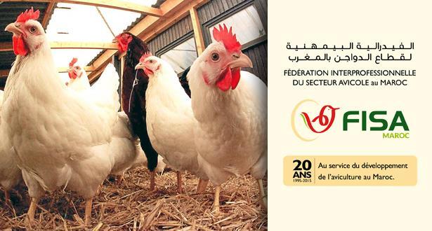 """بلاغ توضحي حول ما راج عن نفوق الدجاج بسبب """"الشركي"""""""