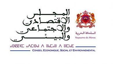 Photo of المجلس الإقتصادي والإجتماعي يقترح مبادرة تمكن الشباب من الحصول على حياة كريمة