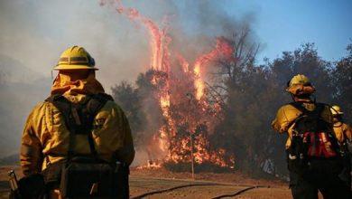 Photo of عدد المفقودين جراء حريق كاليفورنيا يرتفع إلى 1000 شخص