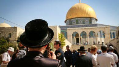 Photo of عشرات المستوطنين يواصلون اقتحاماتهم الاستفزازية للمسجد الأقصى