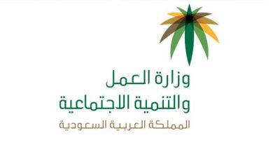 Photo of السعودية تحصر التوظيف في خمس مهن على المواطنين