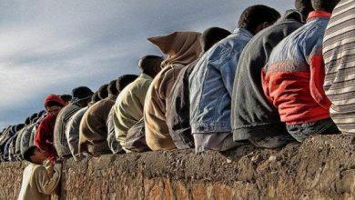 Photo of برلماني أوروبي.. المغرب واجهة للبلدان الإفريقية في مجال الحد من بطالة الشباب