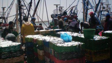 Photo of لجنة الصيد البحري بالبرلمان الأوروبي تصادق على اتفاق الصيد البحري بين المغرب والاتحاد الأوروبي