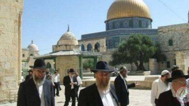 Photo of مستوطنون إسرائيليون يجددون اقتحاماتهم الاستفزازية للمسجد الأقصى