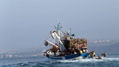Photo of مصدر عسكري: اصطدام قارب صيد مغربي بأحد الشعاب البحرية بطرفاية وإنقاذ أفراد الطاقم الثلاثين