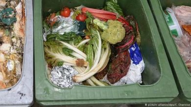 Photo of مبادرة ألمانية للحد من هدر المواد الغذائية ومخلفاتها