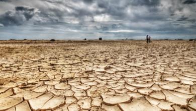 Photo of تقرير.. أكثر من ملياري شخص يعيشون في دول تعاني من نقص شديد في المياه