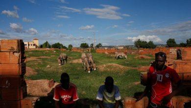 Photo of مالي.. 134 قتيلا على الأقل في هجوم مسلح على رعاة قبائل الفولاني