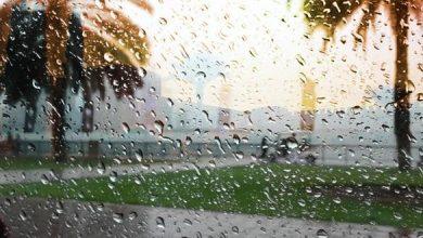 Photo of مقاييس التساقطات المطرية المسجلة بالمملكة خلال الـ24 ساعة الماضية
