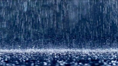 Photo of مقاييس التساقطات المطرية المسجلة بالمملكة خلال ال24 ساعة الماضية