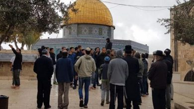Photo of مئات المستوطنين المتطرفين يقتحمون الأقصى